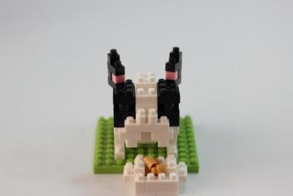 nanoblock フレンチブルドッグ パイド6